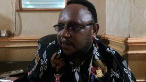 Perlu Adanya Grand Design Untuk Pembangunan ekonomi Papua