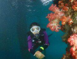 Ini Tantangan Atlet Selam Maluku di PON XX
